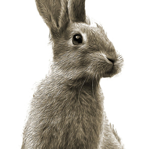 Rabbit_wall_paper