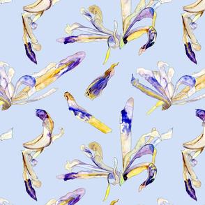 Spoonflower_Botanical_Sketchbook_repeat