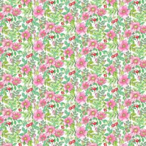 Beach Rose allover pattern-white
