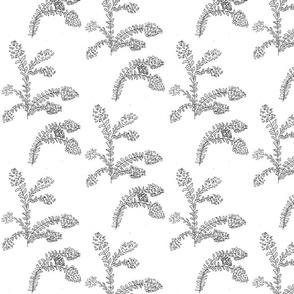 Crepe Myrtle Garden