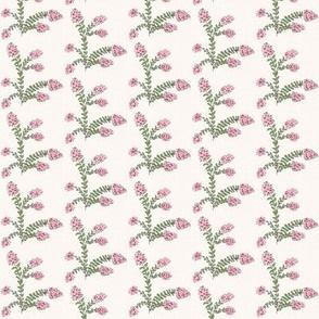Crepe Myrtle Garden MINI-parchment petalberry