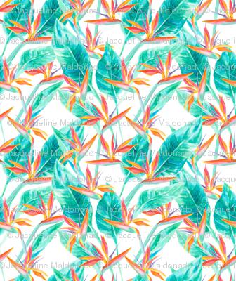 Birds of Paradise White
