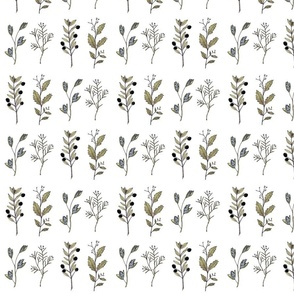 botanicalbranches