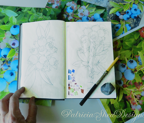 Blueberry Botanical Sketchbook