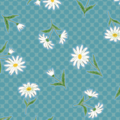 daisies on two-tone teal