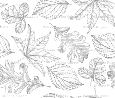 Pen and Ink Leaves