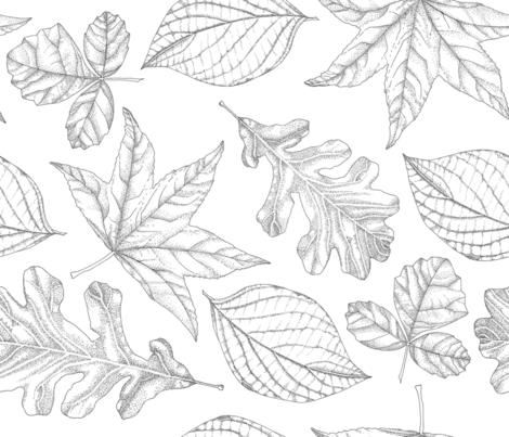 Pen and Ink Leaves fabric by aalk on Spoonflower - custom fabric