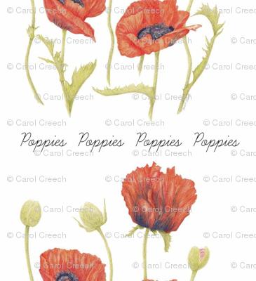 Poppies Sketchbook