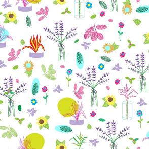 Provencal Botanical Sketches