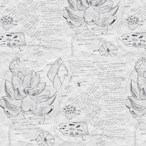 Lotus_Study_paper