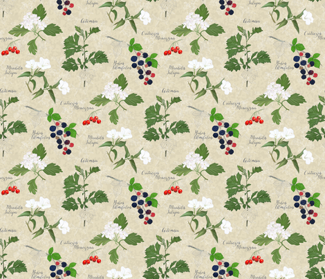 Botanical_Sketchbook: Flowers and fruits fabric by mia_valdez on Spoonflower - custom fabric