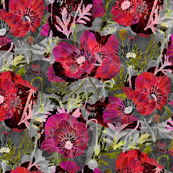 Romance Poppies Mod Dark Botanical