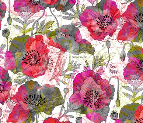 Romance Poppies Mod Colors Botanical fabric - robinpickens ...