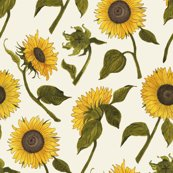 Painted-sunflowers-final_shop_thumb