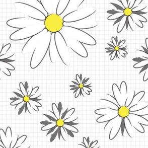 daisies+graph