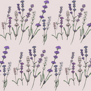 Botanical Sketchbook, Lavender
