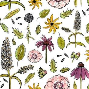 Backyard Botanicals