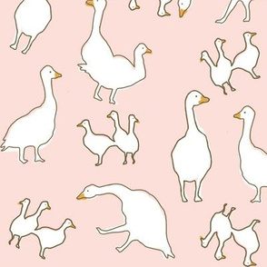 Geese in pink