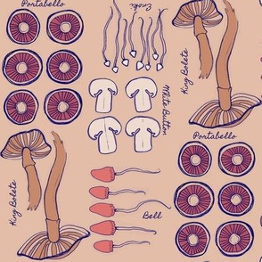 Mushroom Classifications