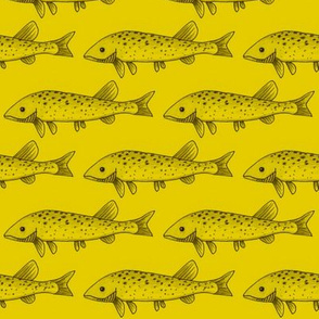 Fish on yellow
