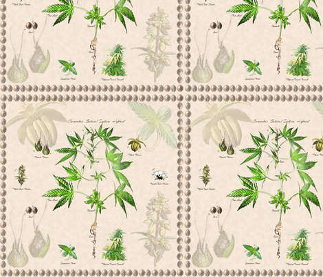 Cannabis Botanical 12x12 fabric by camomoto on Spoonflower - custom fabric
