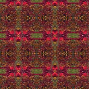 Foliage VT 1