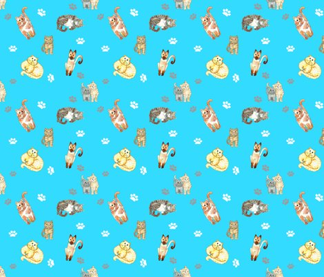 Rrandom_cats_on_turquoise_shop_preview