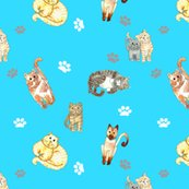 Rrandom_cats_on_turquoise_shop_thumb