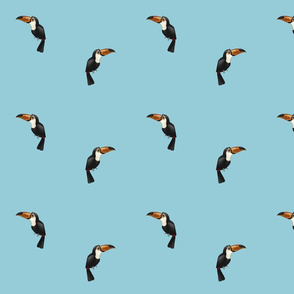 Toucans Blue (small)