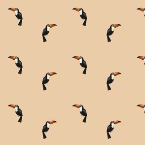 Toucans Peach (small)