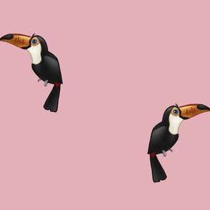 Toucans Pink