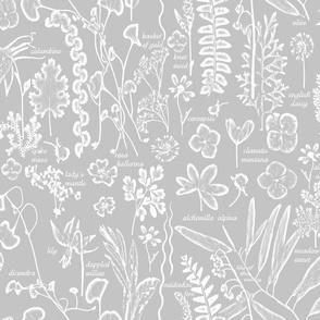 Collectors Sketchbook grey lg w text