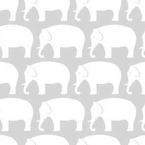 white-and-grey-elephants