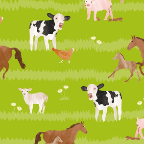 Young farm animals