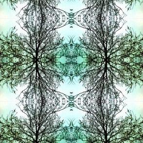 Winter Tree - Aqua