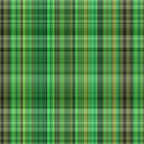 Forest Green Plaid 1