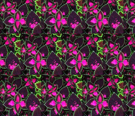 Rhapsody in Pink fabric by gothamwood on Spoonflower - custom fabric
