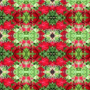 GeraniumCropForSpoonflower