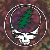 1x1 Half-Drop Steal Your Face2 Stealie Green Bolt Grateful Dead