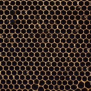 Apis — Dark Honeycomb