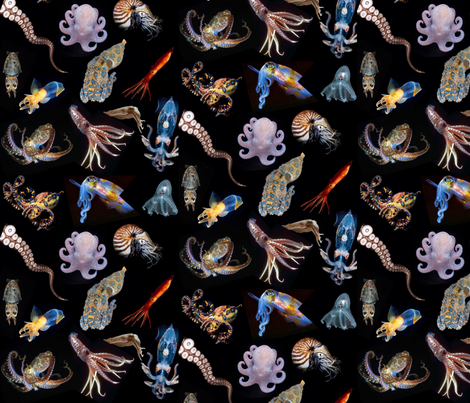 image fabric by tiger561 on Spoonflower - custom fabric