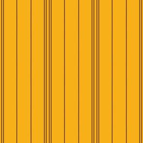 Orange Stripe 1