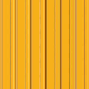 Orange Stripe 2
