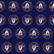 Star Trek Starflert Acadamy