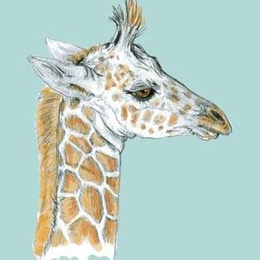 Custom Baby Giraffe on Turquoise