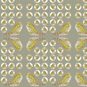 Lizard_green_1