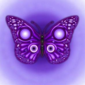 Purple Butterfly Fierce