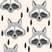 Rnew_raccoon_face_champagne_shop_thumb