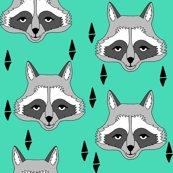 Rnew_raccoon_face_light_jade_shop_thumb