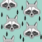 Rnew_raccoon_face_mint_shop_thumb